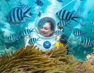 Phú quốc seawalker - đại lý vé đi bộ dưới biển tại công viên san hô phú quốc seaworld namaste