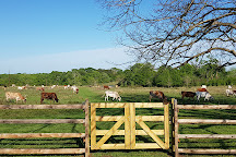 Texas Ranch Life, Chappell Hill, United States