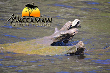 Waccamaw River Tours, Myrtle Beach, United States