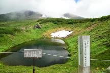 Asahi-dake, Higashikawa-cho, Japan