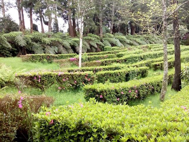 Parque Florestal das Sete Fontes