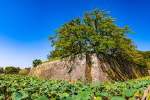 Tsurumaru Castle Ruins, Kagoshima, Japan