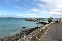 Rangitoto Island, Auckland Central, New Zealand