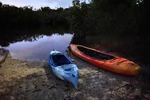 Jenny's Eco Everglades Wilderness Tours, Everglades City, United States