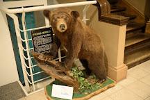 The Hokkaido University Museum, Sapporo, Japan