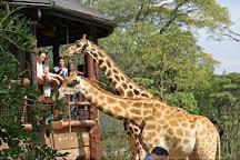 Guided Nairobi City Tours, Nairobi, Kenya