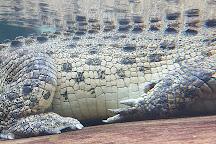 WILD LIFE Sydney Zoo, Sydney, Australia