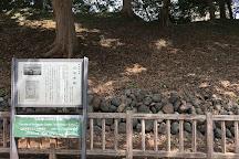 Yamagata castle, Yamagata, Japan