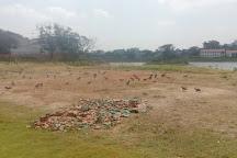 Chetpet EcoPark, Chennai, India