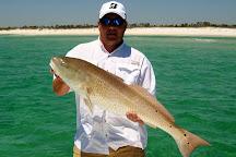 Full Net Fishing Charters, Navarre, United States