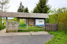 Schwarzes Moor, Fladungen, Germany