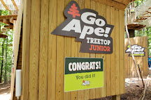 Go Ape Zipline & Adventure Park, Springfield, United States
