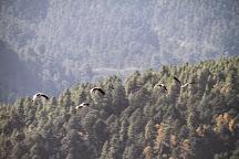 Bhutan Tourer, Paro, Bhutan