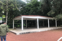 Vivero Coyoacan, Mexico City, Mexico