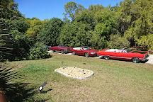 Ollie's Pond Park, Port Charlotte, United States