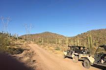 Desert Wolf Tours, Phoenix, United States