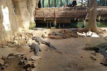 Alligator Bay, Beauvoir, France