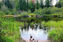 Bonnechere Provincial Park, Bonnechere, Canada