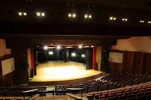 Centro de Convencoes de Goiania - Rio Vermelho Theater, Goiania, Brazil