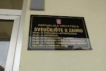 University of Zadar, Zadar, Croatia