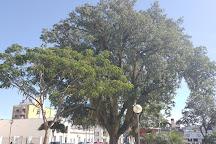 Plaza Cabral, Corrientes, Argentina