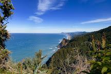 Cape Sebastian State Scenic Corridor, Oregon, United States