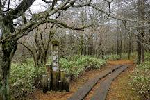 Numappara Marshland, Nasushiobara, Japan