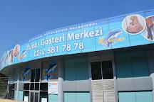 Istanbul Dolphinarium, Istanbul, Turkey