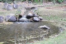 Jardin Botanico Lankester, Cartago, Costa Rica