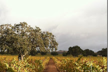Firestone Vineyard, Los Olivos, United States