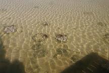Lake Thetis, Cervantes, Australia
