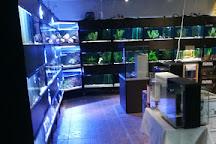 Akvaariolinna, Vantaa, Finland