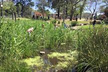 Alma Park, St Kilda, Australia