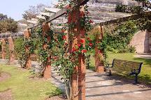 Southsea Rose Garden, Portsmouth, United Kingdom