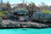 Pro Excursions, Bayahibe, Dominican Republic