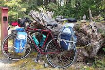 Rosewall Creek Provincial Park, Fanny Bay, Canada