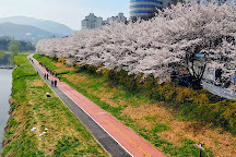 Yangjae Citizens' Forest, Seoul, South Korea