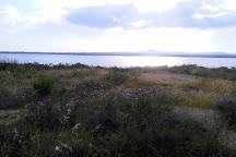 Larnaka Salt Lake, Larnaca, Cyprus