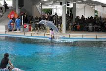 S.E.A. Aquarium, Sentosa Island, Singapore