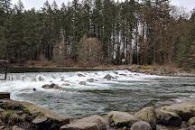 Puntledge River Hatchery, Courtenay, Canada