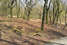 Tandle Hill Country Park, Oldham, United Kingdom