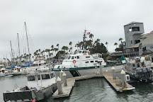 Island Packers, Ventura, United States