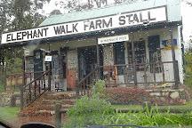 Elephant Walk Farm Stall, Plettenberg Bay, South Africa