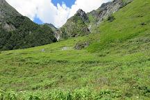 Valley of Flowers National Park, Uttarakhand, India