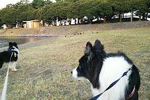Daiba Park, Minato, Japan