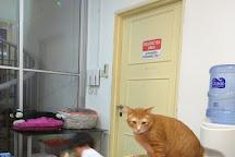 The Cat Museum, Singapore, Singapore