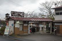 Yoshinoyama Station, Yoshino-cho, Japan