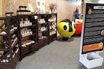 Huka Honey Hive, Taupo, New Zealand