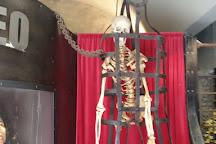 Museo della Tortura di San Gimignano, San Gimignano, Italy