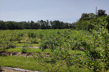 Herndon Hills Farm, Durham, United States